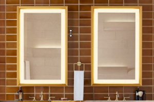 robern vitality mirror